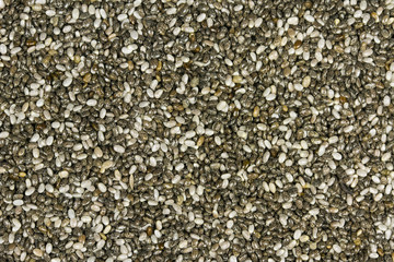 Raw Organic Chia Seeds