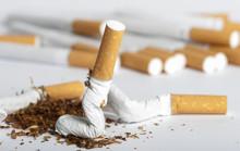 Pogniecione papierosów