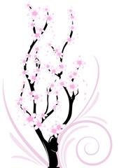 ramo fiori di ciliegio decorazione
