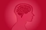 Vector, Hirn, rot, Hintergrund, Medizin