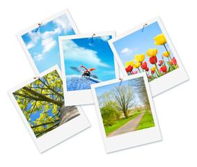 Endlich Frühling!, Frühlingsbilder, freigestellt, Sofortbild