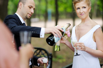 Wedding guests toasting bride and groom