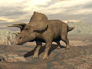 Tricera dinosaur standing - 3D render