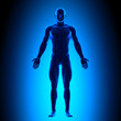 Anatomy Body - Front View - Blue concept - 51628312