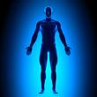 Leinwanddruck Bild - Anatomy Body - Front View - Blue concept