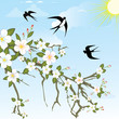 Flower branch with birds.