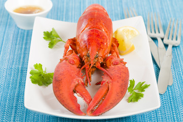 Lobster, browned butter and lemon wedges on a blue background