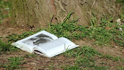 wind turned the pages of the book