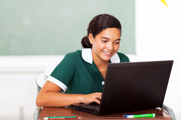 schoolgirl doing classwork using computer