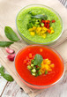 Delicious cold red and green gazpacho soup  in  bowls