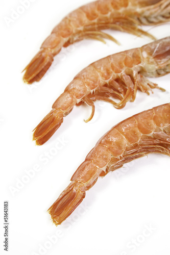 Fresh shrimp tails