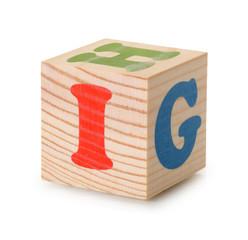 Wooden alphabet blocks