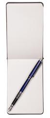 The diary with a blue fountain pen