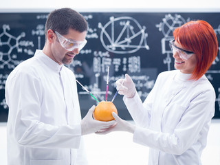 laboratory grapefruit  experiment