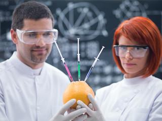 experimental studies on a grapefruit