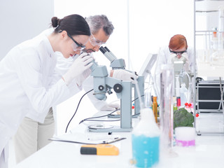 chemical  laboratory analysis