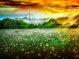 Feld  von Pusteblumen im Sonnenaufgang vor Windrädern vor