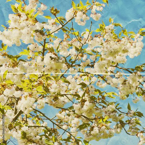 paper blossom