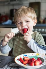 Little boy eating fresh strawberries