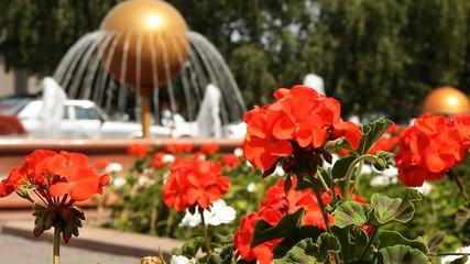 Fountain in the garden.