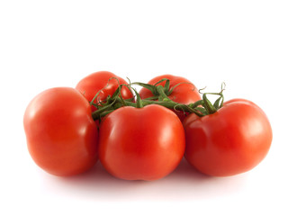 Fresh red tomatoes on branch. Isolated on white.