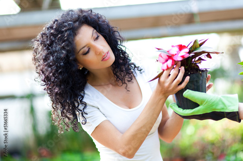 Female florist checking flowers
