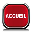 ACCUEIL ICON