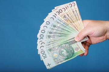 Businessman holding money polish banknote