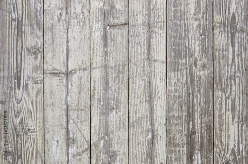 Wood Texture - Ecological Background