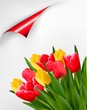 Holiday background with bouquet of red and yellow flowers. Vecto