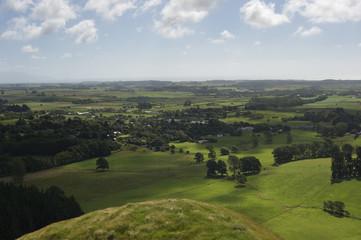 New Zealand rural scene