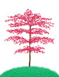 Beautiful tree.vector
