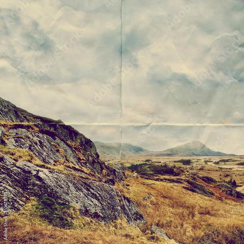paper wilderness