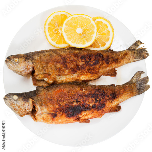 fried river trout fish on white background