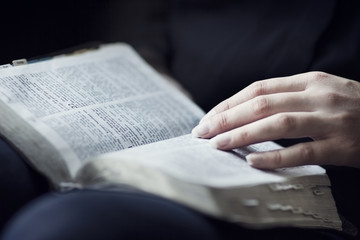 Woman Reading and Study the Bible