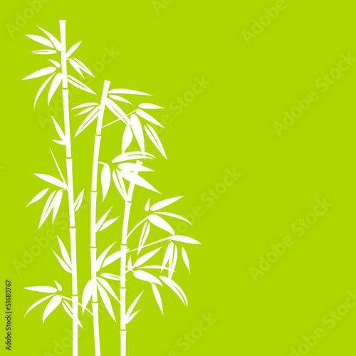 Bamboo White/Green
