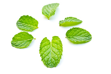 Peppermint on a white background