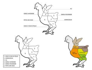 parti del pollo