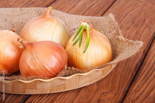 Onion with sprouts on a napkin with burlap on a wooden plate