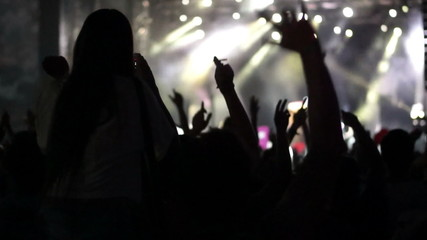 Concert Crowd, slow motion