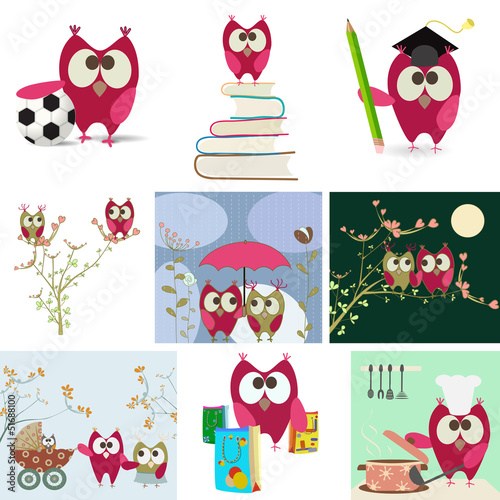 owl love story