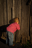 Young Boy Peeking in a Barn