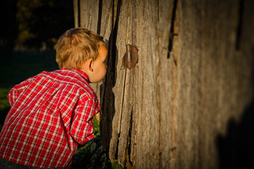 Young Boy Peeking Into a Barn