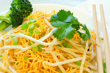 Chow Mein Nooldes with Vegetable