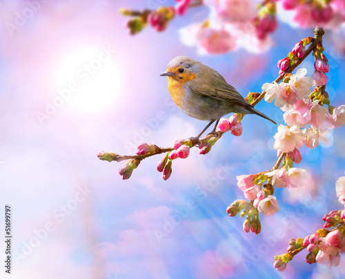 Staande foto Lente abstract Spring border background with pink blossom
