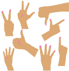 women  hands collection