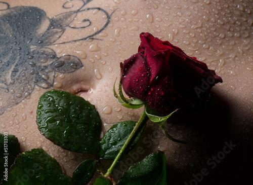 Rose auf dem Bauch einer Frau