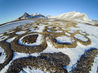 Patterned ground in the Arctic, Svalbard