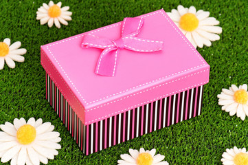 Gift box on grass