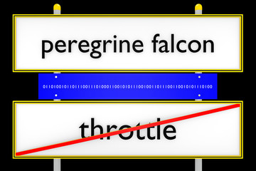 peregrine falcon vs throttle konzeptionell_Internet - 3D